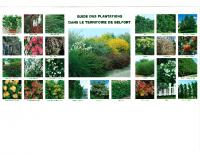 PLU_Guide_Plantations